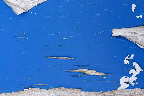 Lead Paint home inspections