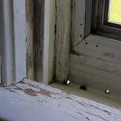 paint with lead inspections in Columbus OH